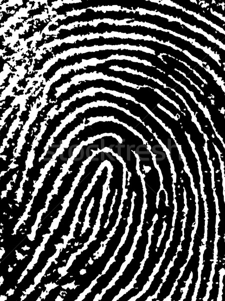 FingerPrint Crop Stock photo © PokerMan