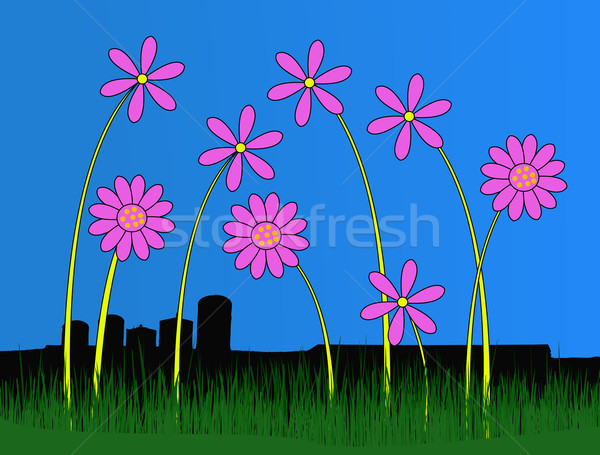 Pink Flowers in front of bleak buildings Stock photo © PokerMan