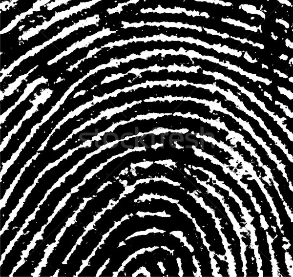 FingerPrint Crop 3 Stock photo © PokerMan