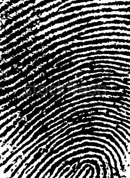 FingerPrint Crop 6 - Low Poly Count Stock photo © PokerMan