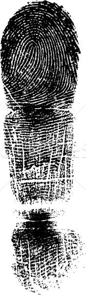 Full FingerPrint 1 Stock photo © PokerMan