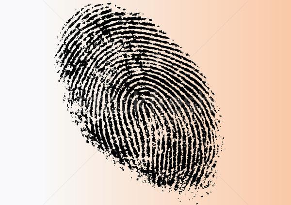 Stock photo: Very Detailed Vector FingerPrint
