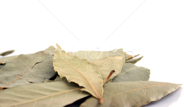 Spice - Bay Leaves close up Stock photo © PokerMan
