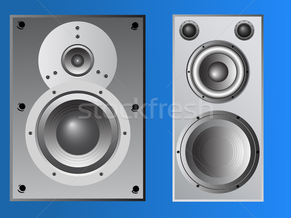 2Large Loudspeaker Cabinet Stock photo © PokerMan