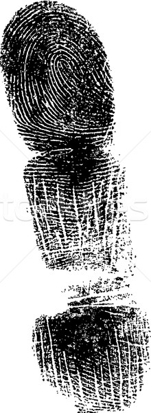 Tele ujjlenyomat ujj részletes vektor kép Stock fotó © PokerMan