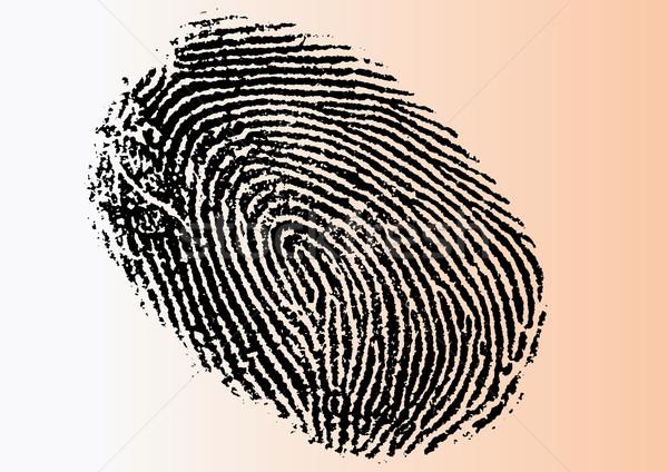 Сток-фото: подробный · вектора · отпечатков · пальцев · черно · белые · прозрачный · можете
