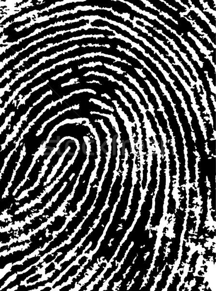 FingerPrint Crop 4 - Low Poly count Stock photo © PokerMan