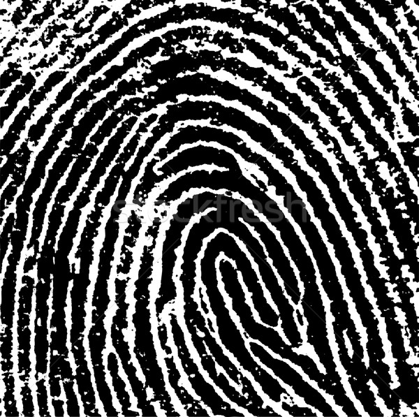 отпечатков пальцев черно белые вектора прозрачный можете Сток-фото © PokerMan
