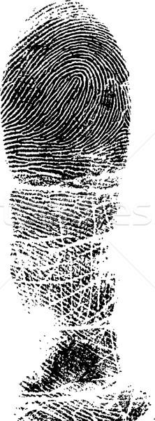Full FingerPrint 2 Stock photo © PokerMan