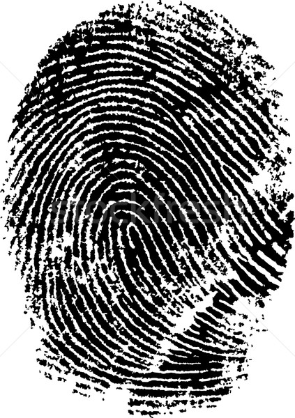 Close up of a Fingerprint Stock photo © PokerMan