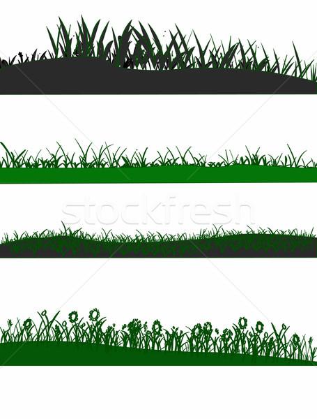 4 Grass graphic elements Stock photo © PokerMan