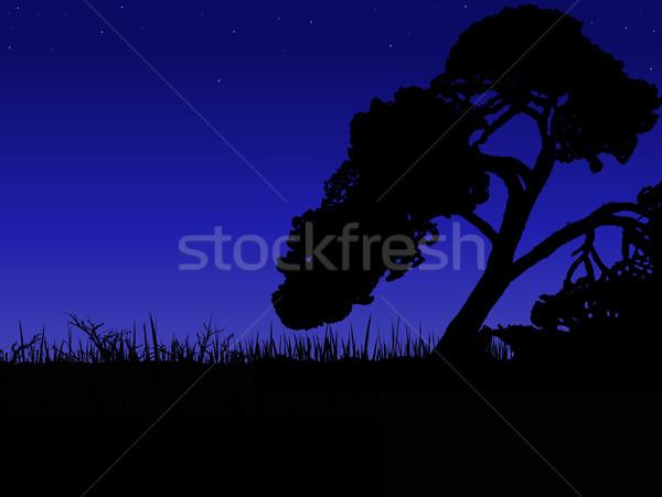 Africaine coucher du soleil arbre vecteur format eau Photo stock © PokerMan