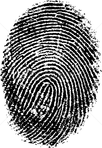 FingerPrint  Stock photo © PokerMan