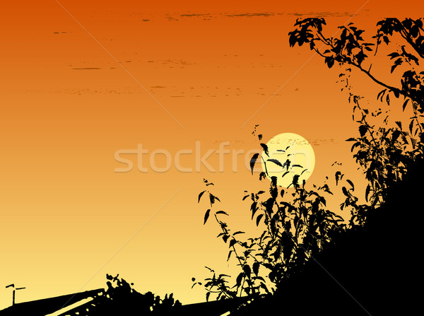 Sunset over suburbia Stock photo © PokerMan