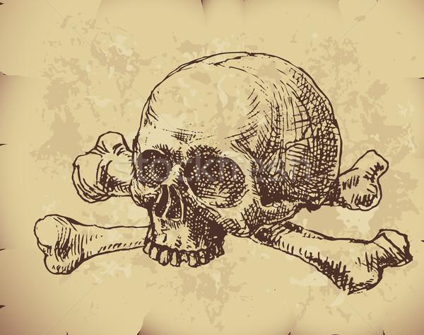 Kafatası kemikleri Eski kağıt eps8 düzenlenmiş Stok fotoğraf © polygraphus