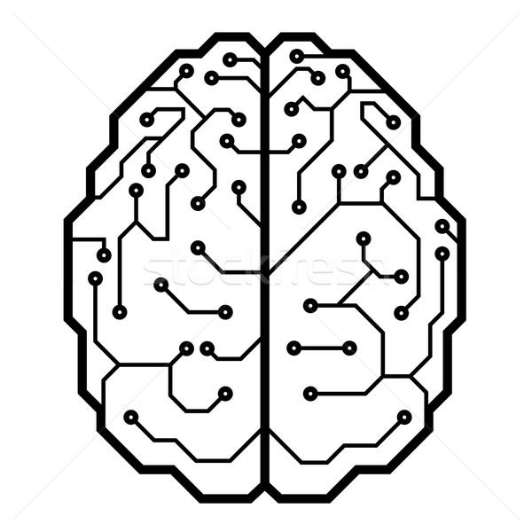 Beyin devre kartı biçim eps8 düzenlenmiş Stok fotoğraf © polygraphus
