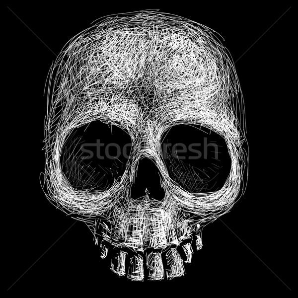 Kafatası eps8 düzenlenmiş geçişlerini Stok fotoğraf © polygraphus