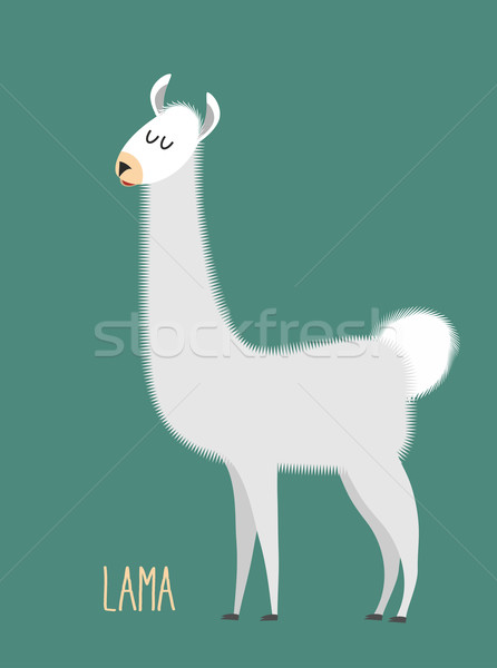 Llama Alpaca. Animal Lama on a green background. Vector illustra Stock photo © popaukropa