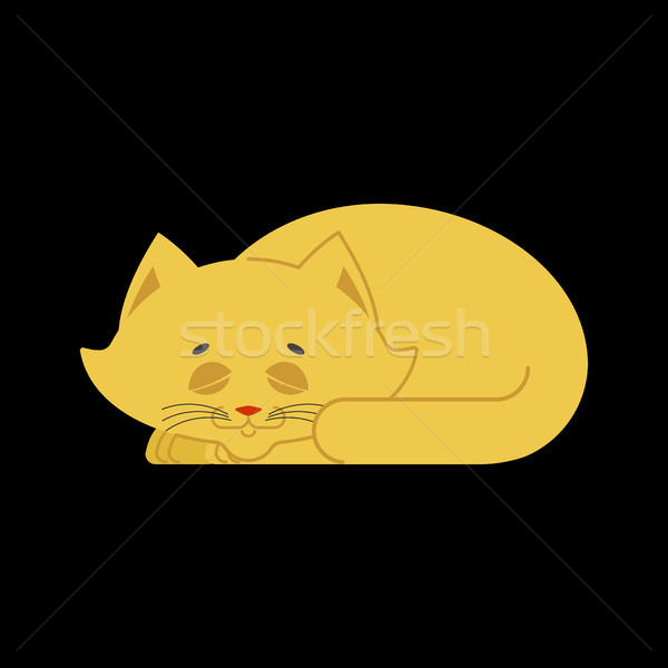 Sleeping cat yellow isolated. kitten be asleep. sleep pet Stock photo © popaukropa