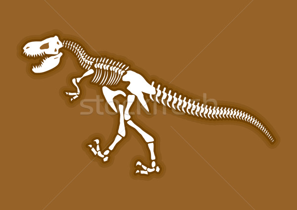 Dinosaur skeleton. Ancient animal bones in ground. FossilTyranno Stock photo © popaukropa