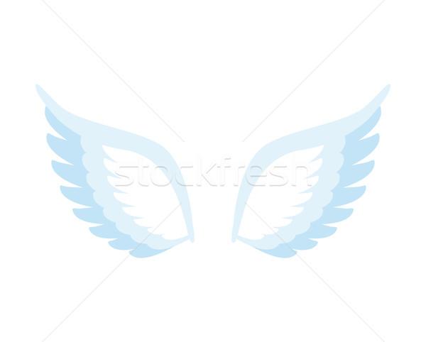 Angyalszárnyak izolált tollak madár fehér égbolt Stock fotó © popaukropa