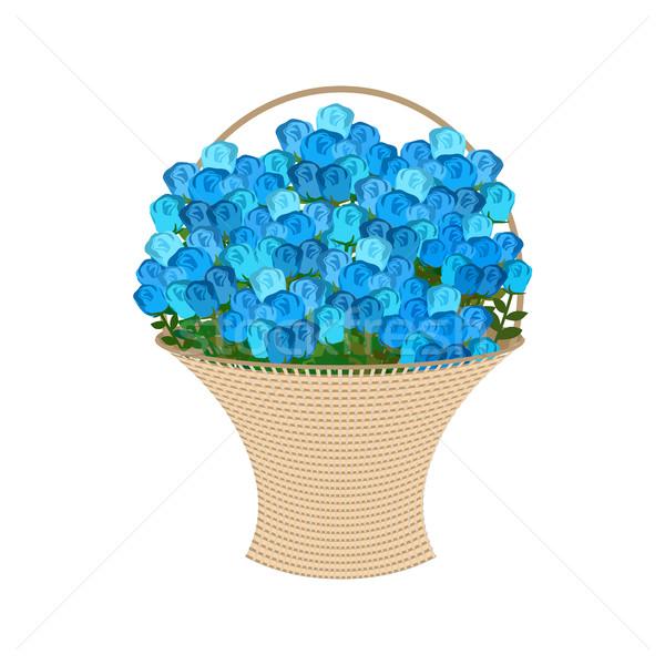 Mavi güller sepet büyük buket çiçekler Stok fotoğraf © popaukropa
