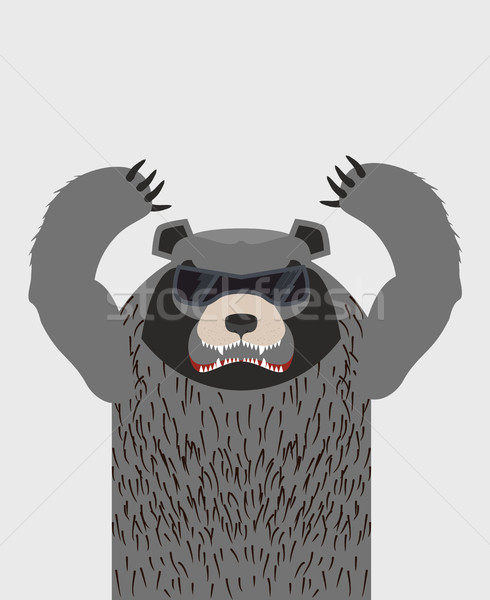 Angry grizzly bear with glasses. Vector illustration Stock photo © popaukropa