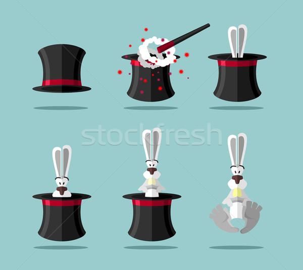 Ayarlamak büyücü tavşan vektör ikon Stok fotoğraf © popaukropa
