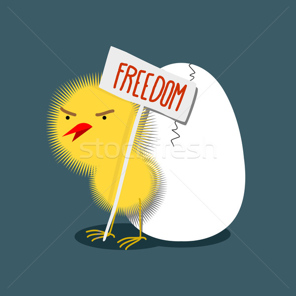 Little furry yellow wicked chick holds a plate of 'Freedom'. Bir Stock photo © popaukropa