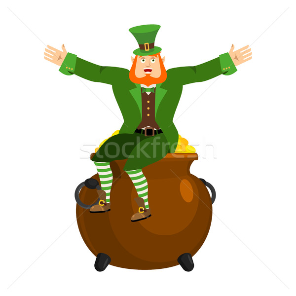 Leprechaun and pot of gold. Dwarf with red beard and boiler of g Stock photo © popaukropa