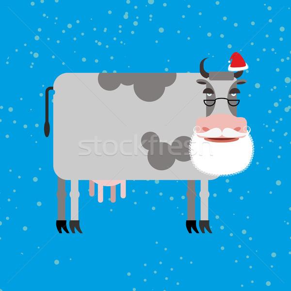Tehén mikulás haszonállat szakáll bajusz karácsony Stock fotó © popaukropa