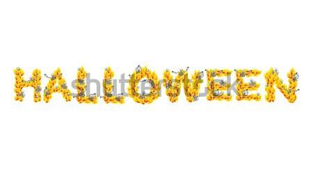 Brand halloween brieven hel hel Stockfoto © popaukropa