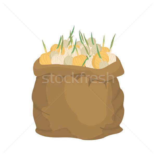 Soğan çuval bezi çanta sebze büyük Stok fotoğraf © popaukropa