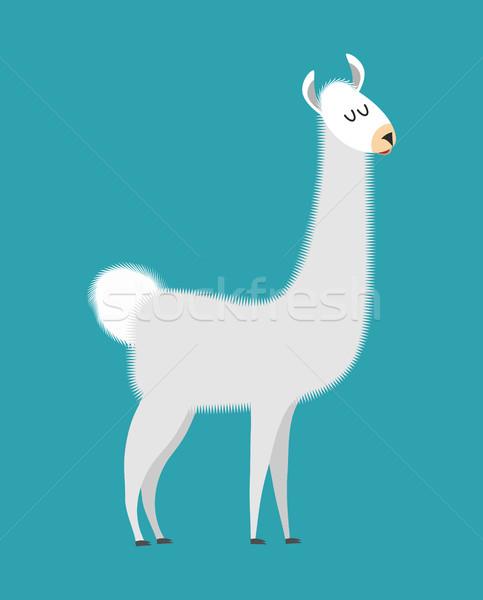 Aislado cute alpaca animales mamífero Foto stock © popaukropa