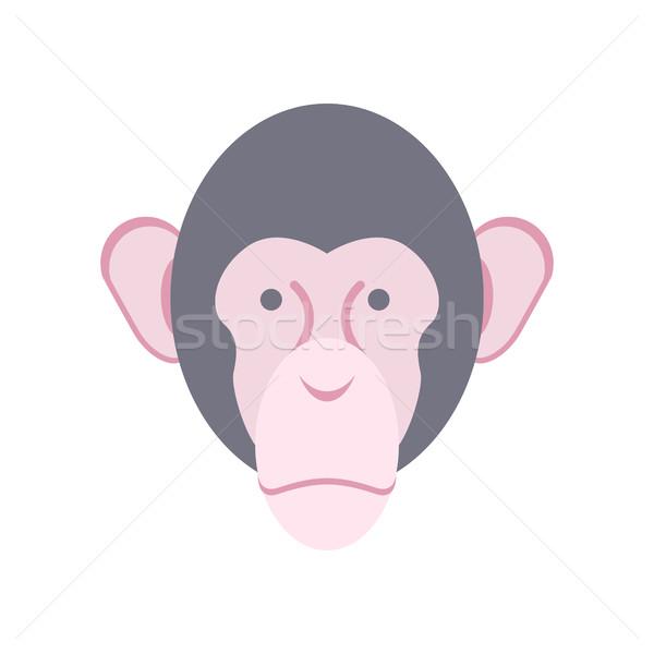 Maymun yüz yalıtılmış şempanze kafa kişi Stok fotoğraf © popaukropa