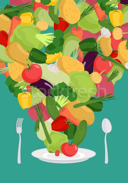 野菜 プレート 野菜 皿 精進料理 ディナー ストックフォト © popaukropa