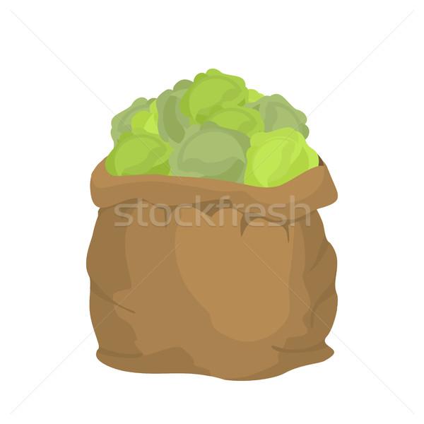 キャベツ 黄麻布 袋 野菜 ビッグ ストックフォト © popaukropa