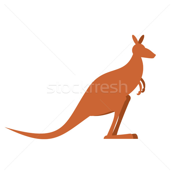 Kangaroo isolated. wallaby on white background. Australian anima Stock photo © popaukropa