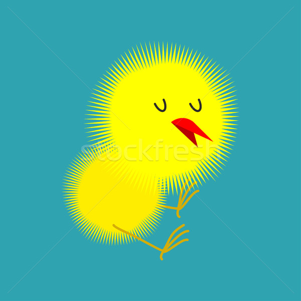 Chick isolated. Small Chicken. little farm yellow bird Stock photo © popaukropa