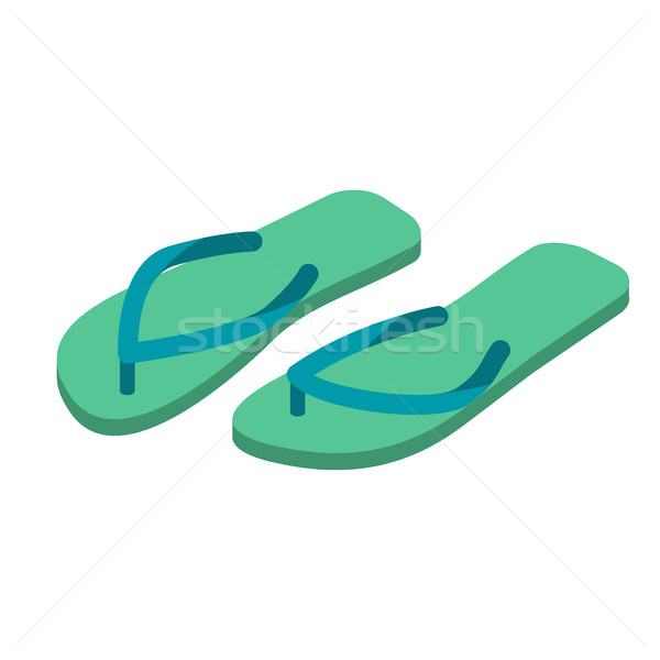 Házi cipők izolált nyari cipő tengerpart csizma felirat Stock fotó © popaukropa