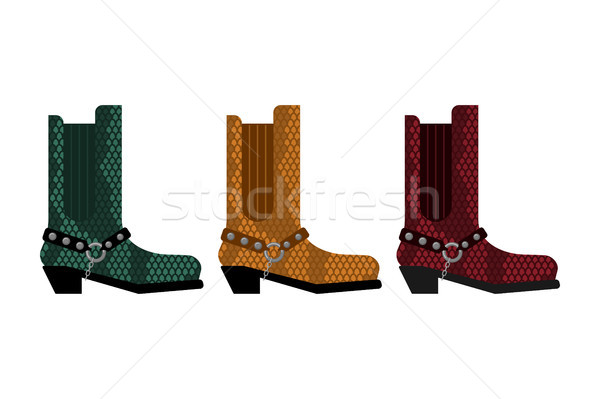 82695a9561b Cowboy boots Set. Australia shoes made crocodile skin vector ...