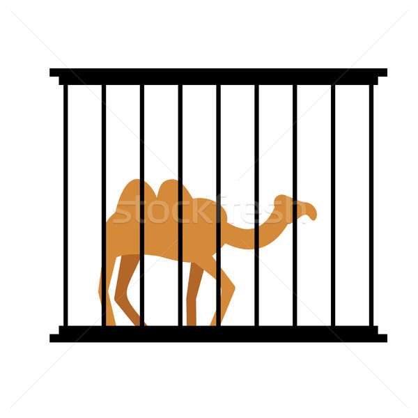 Camel in cage. Animal in Zoo behind bars. Desert wild animal in  Stock photo © popaukropa