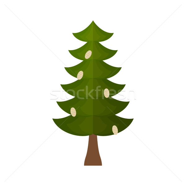 Fir with cones isolated. fir-tree on white background. Christmas Stock photo © popaukropa