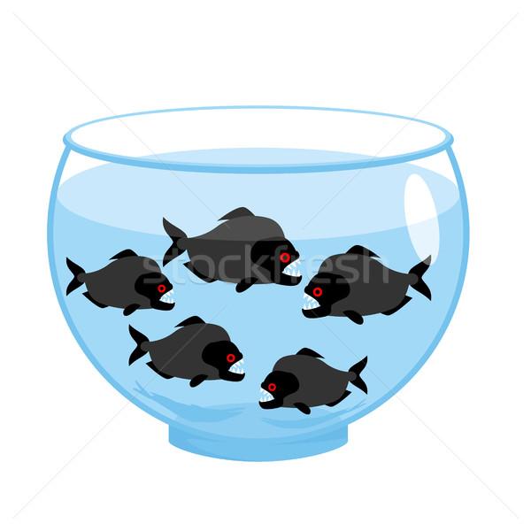 Aquarium dangereux mal poissons effrayant eau Photo stock © popaukropa
