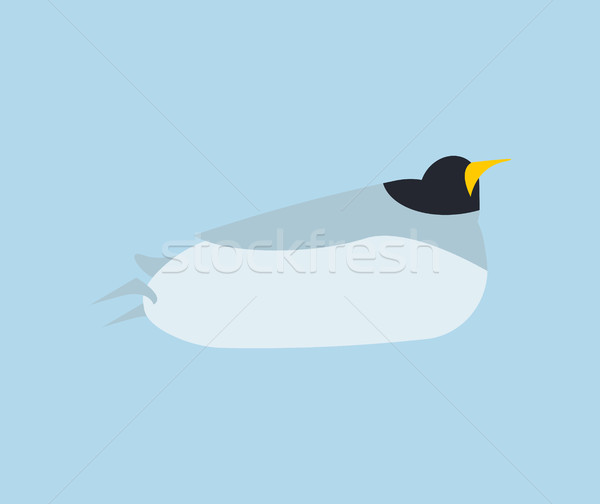 Penguin in water to swim isolated. Animal north pole. Bird Antar Stock photo © popaukropa