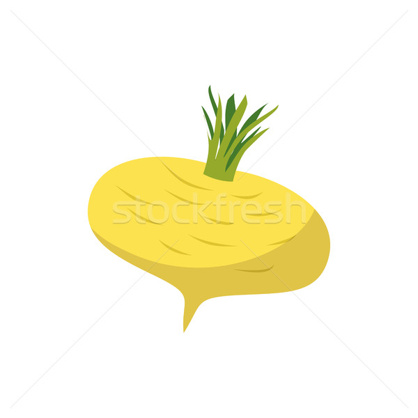 Turnip isolated. Yellow vegetables on white background. vegetari Stock photo © popaukropa