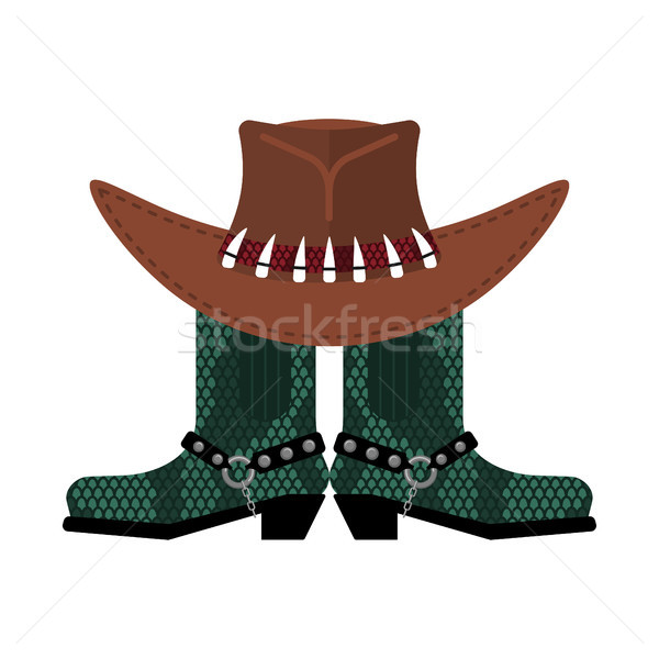 Australian hat and crocodile skin boots. Cowboy cap and python l Stock photo © popaukropa