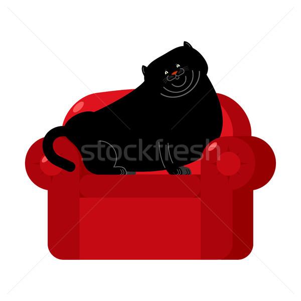 Gordura gato preto vermelho poltrona casa animal de estimação Foto stock © popaukropa