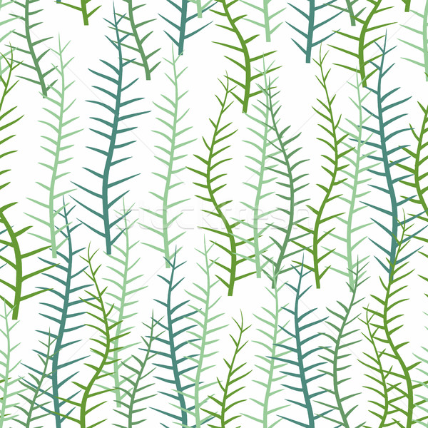 Seaweed on a white background. Seamless pattern of marine plants Stock photo © popaukropa