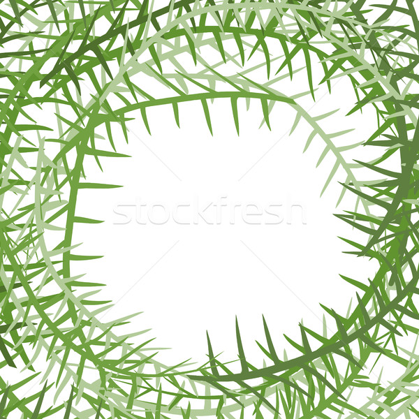 Algae frame. Leading grass background. place for text Stock photo © popaukropa